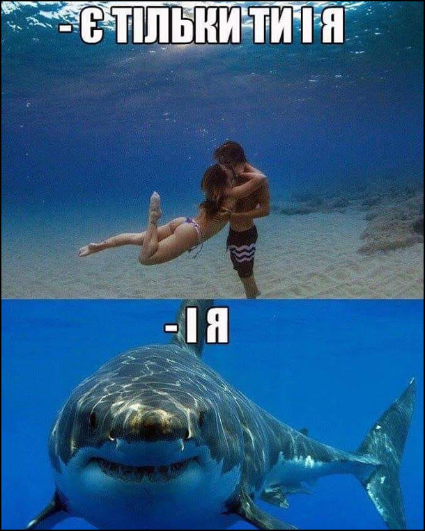 Романтика під водою. Хлопець і дівчина обіймаються під водою: - Є тільки ти і я. Підпливає акула: - І я