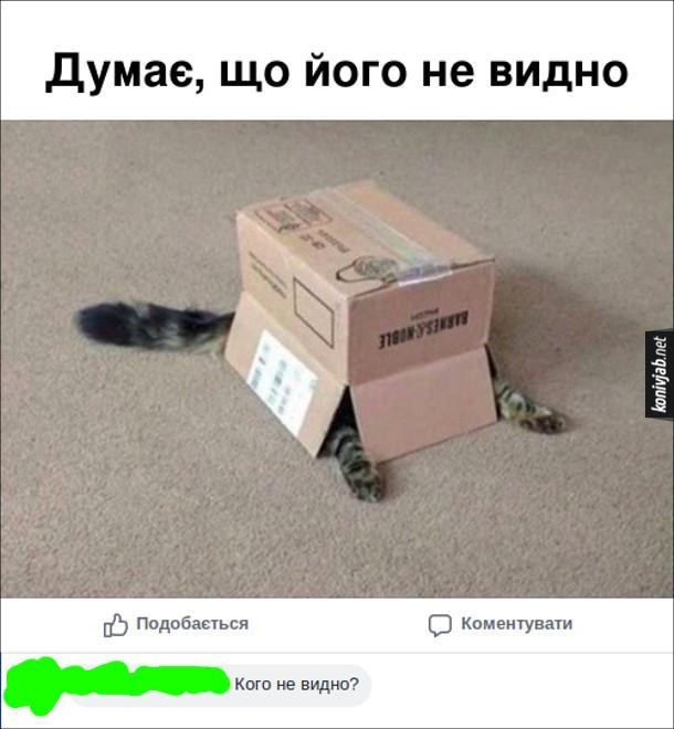 Кіт сховався під коробкою, звідти лише стирчать лапи і хвіст. Думає, що його не видно. Комент: - Кого не видно?