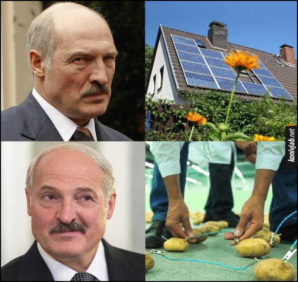 Прикол Альтернативна енергетика. Сонячні батареї - Олександр Лукашенко незадоволений. Електрика з картоплі - Лукашенко задоволений