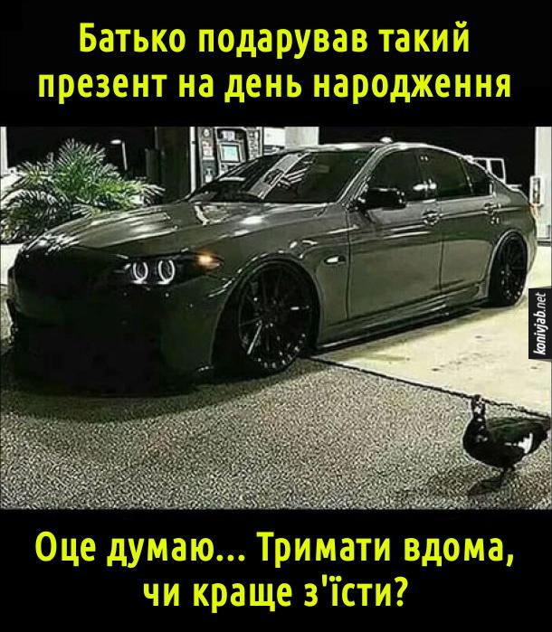 Прикол Подарунок на день народження. Батько подарував такий презент на день народження (на фото: дорогий BMW а біля нього стоїть качка). Оце думаю... Тримати вдома, чи краще з'їсти? (тобто, батько подарував качку)