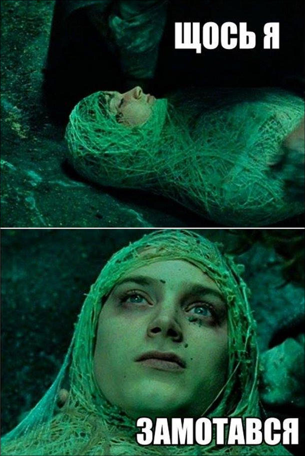 Мем про Фродо. Фродо в павутині: - Щось я замотався