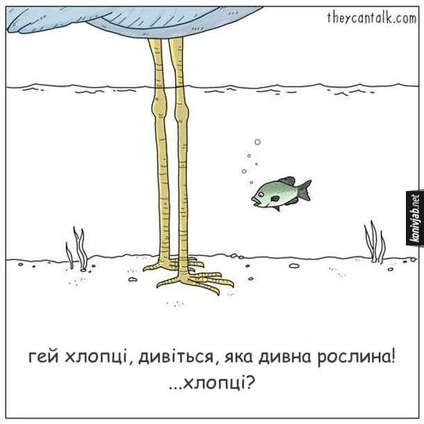 Смішний малюнок Риба і чапля. Риба дивиться на лапи чапліі каже: - Гей хлопці, дивіться, яка дивна рослина! ...Хлопці?