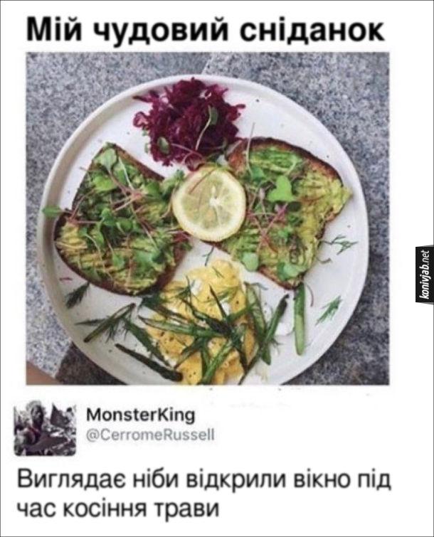"""Мем про веганську страву. Викладено вегетаріанську страву з підписом """"Мій чудовий сніданок"""". Коментар: Виглядає ніби відкрили вікно під час косіння трави"""