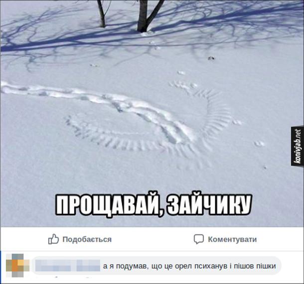 Прикол. Сліди на снігу. Сніги зайця припиняються і видно сліди крил птаха. Підпис: Прощавай, зайчику. Коментар: А я подумав, що це орел психанув і пішов пішки
