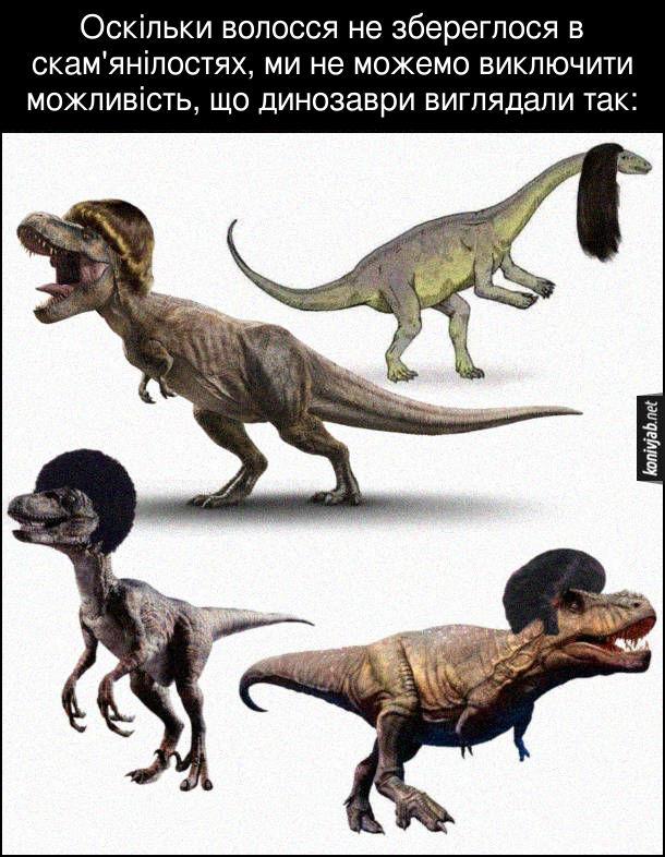 Прикол Волосся в динозаврів. Оскільки волосся не збереглося в скам'янілостях, ми не можемо виключити можливість, що динозаври виглядали так: Динозаври з людськими зачісками на голові