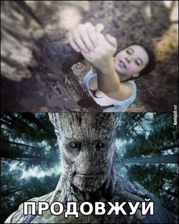 Мем про Грута. Дівчина висить на дереві, тримаючись руками за гілочку. А насправді то пеніс Ґрута. Ґрут: - Продовжуй