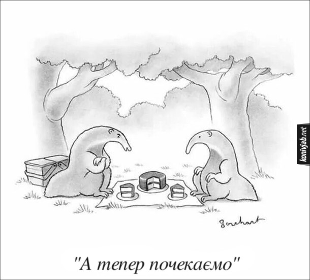 Смішний малюнок про мурахоїдів. Двоє мурахоїдів прийшли на пікнік. Розстелили рядно і наклали собі на тарілки по шматочку торта. Один з мурахоїдів: - А тепер почекаємо (будуть чекати доки прийдуть мурахи)