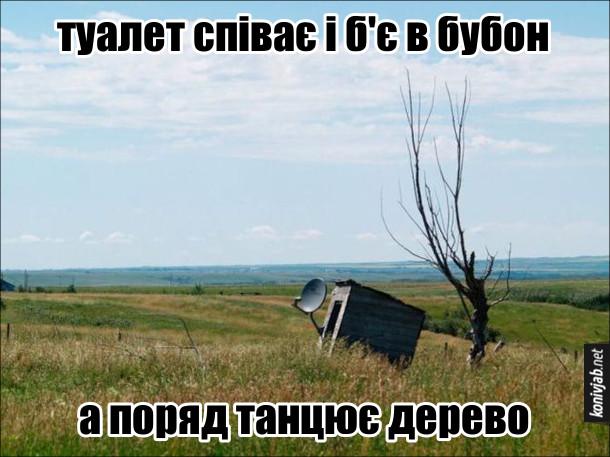 Смішний погляд на речі. Туалет співає і б'є в бубон, а поряд танцює дерево