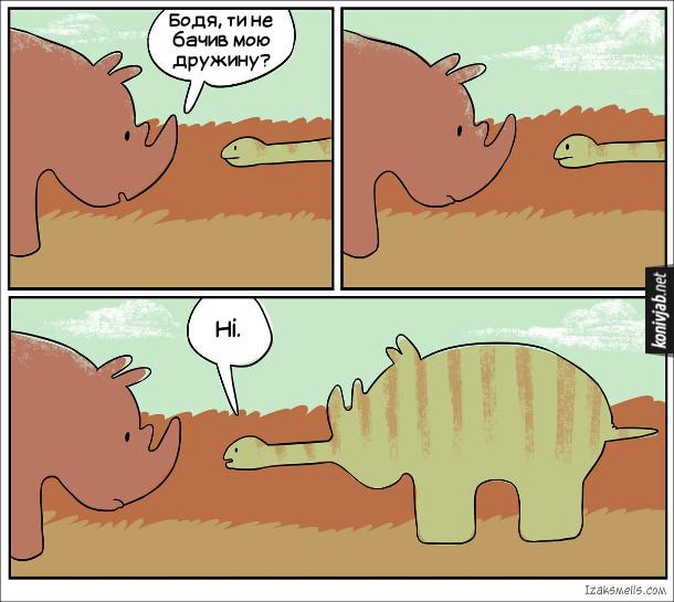 Комікс про удава і носорога. Носоріг питає удава: - Бодя, ти не бачив мою дружину? Удав (видно, що всередині нього носоріг): - Ні
