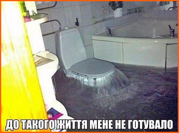 Прикол Забило унітаз. Крізь унітаз ллється потік води і вже затопило ванну кімнату. До такого життя мене не готувало
