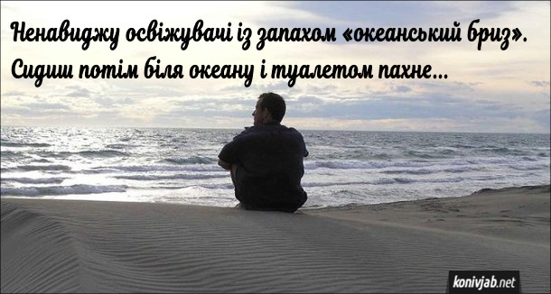 """Анекдот про освіжувач. Ненавиджу освіжувачі із запахом """"океанський бриз"""". Сидиш потім біля океану і туалетом пахне..."""