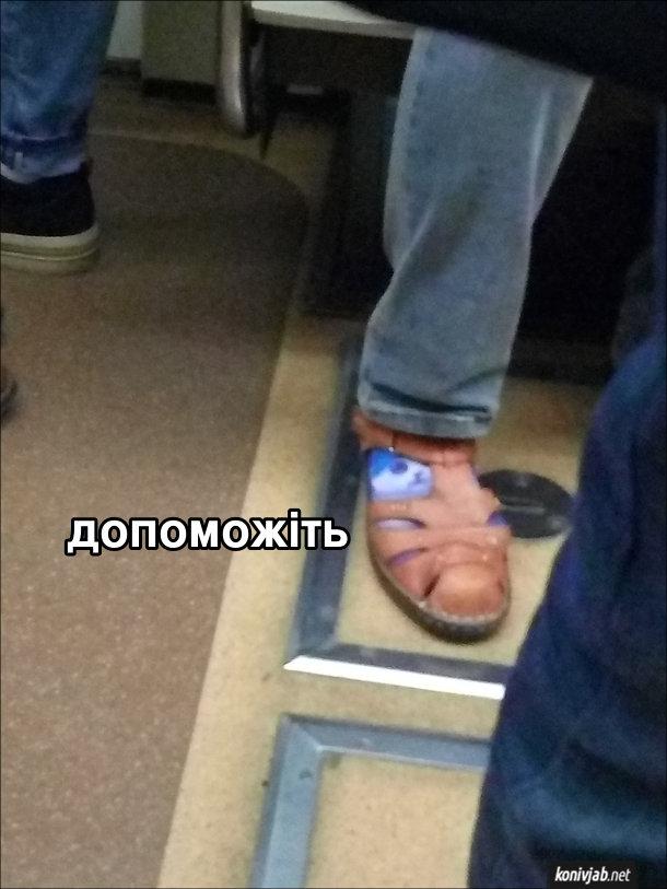 Смішне фото Шкарпетки з котиком. В метро їде чоловік в сандалях, піж якими шкарпетки з котиком. Мордочка котика виглядає крізь шкарпетки і ніби благає: - Допоможіть