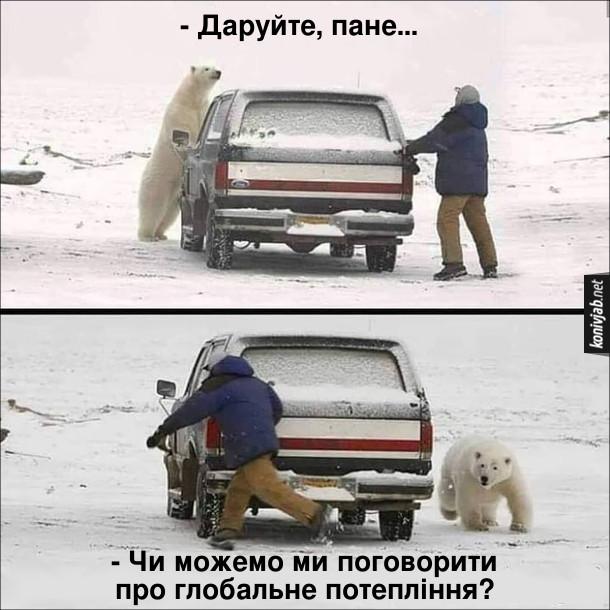 Смішна картинка про ведмедя. В Канаді білий бедмідь бігає за водієм навколо автомобіля з криком: - Даруйте, пане... Чи можемо ми поговорити про глобальне потепління?