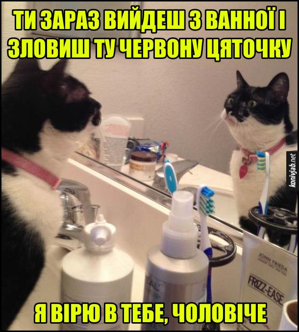Прикол Кіт дивиться в дзеркало. Кіт дивиться в своє відображення в дзеркалі і каже: - Ти зараз вийдеш з ванної і зловиш ту червону цяточку. Я вірю в тебе, чоловіче