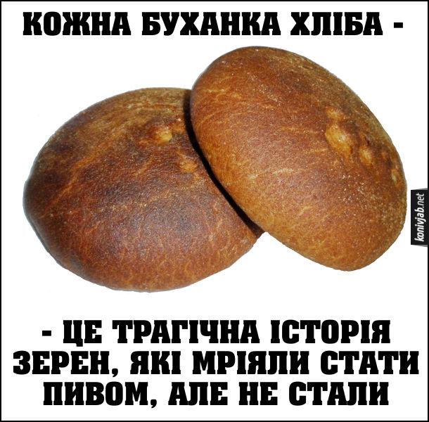 Жарт про хліб. Кожна буханка хліба - це трагічна історія зерен, які мріяли стати пивом