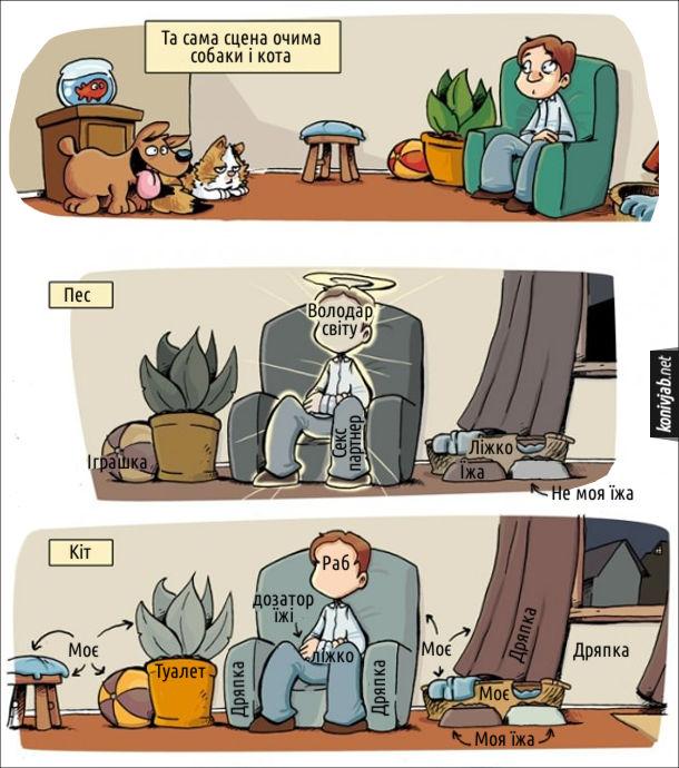 Прикол Різниця між собакою і котом. Та сама сцена очима собаки і кота