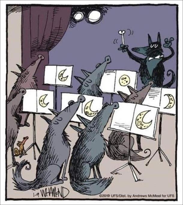Смішний малюнок про вовків. Хор вовків співає (виє) Воаки -співаки дивляться в ноти, де намальований Місяць. Вовк-диригент замість палички, махає кісткою