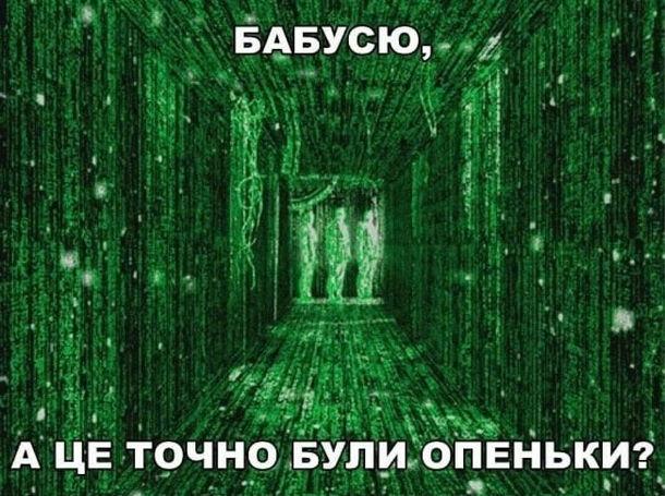"""Прикол про Матрицю. Онуку ввижається цифровий світ як в """"Матриці"""": - Бабцсю, а це точно були опеньки?"""