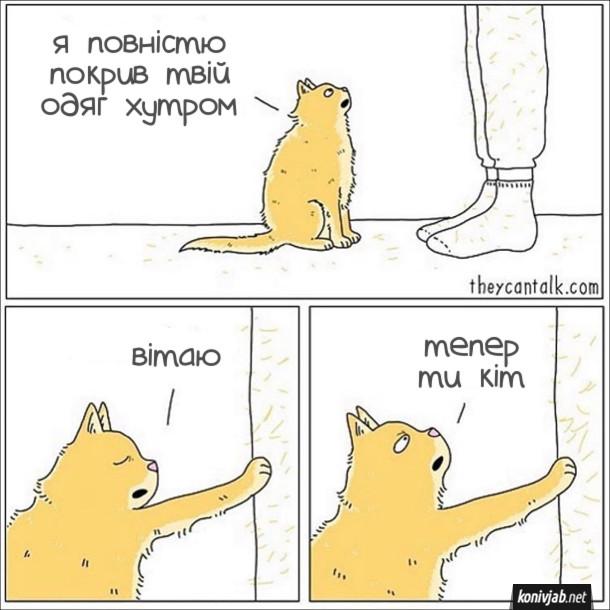 Смішний комікс Котяче хутро. Кіт до господаря: - Я повністю покрив твій одяг хутром. Вітаю, тепер ти кіт