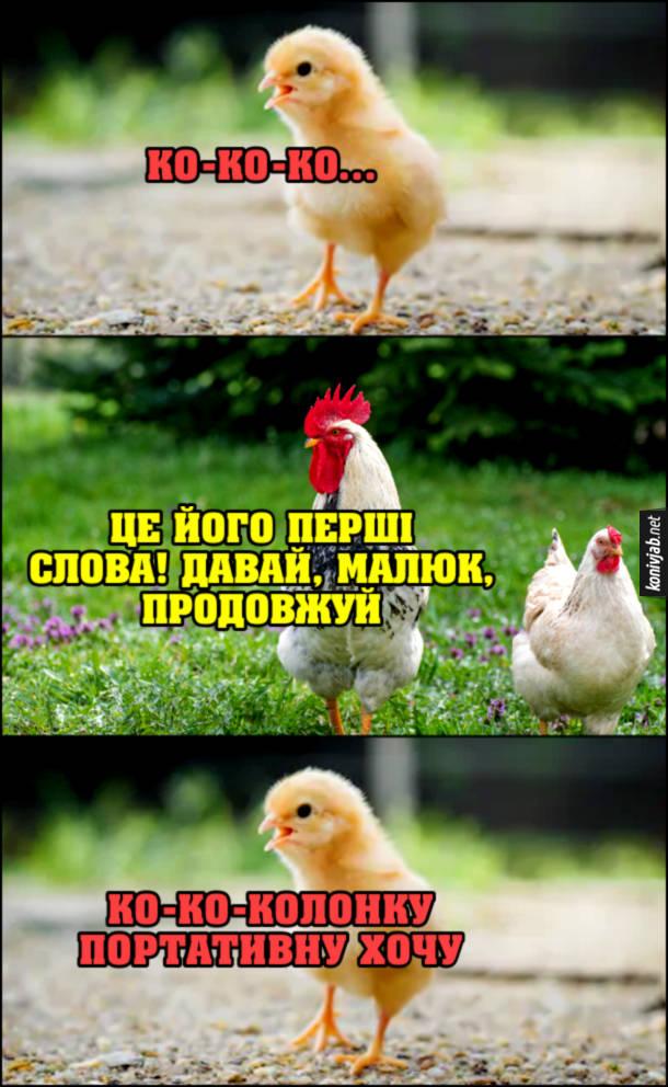 Мем про блютуз колонки. Курча: - Ко-ко-ко. Півень до курки: - Це його перші слова! Давай, малюк, продовжуй. Курча: - Ко-ко-колонку портативну хочу