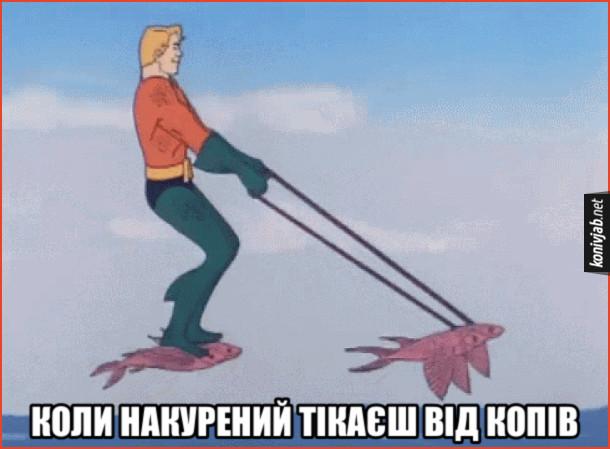 Мем Накурений. Коли накурений тікаєш від копів. Аквамен осідлав летючих риб і летить над морем