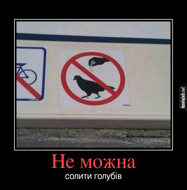 """Прикол Заборона годувати голубів. Але табличка намальована так, ніби: """"Не можна солити голубів"""""""