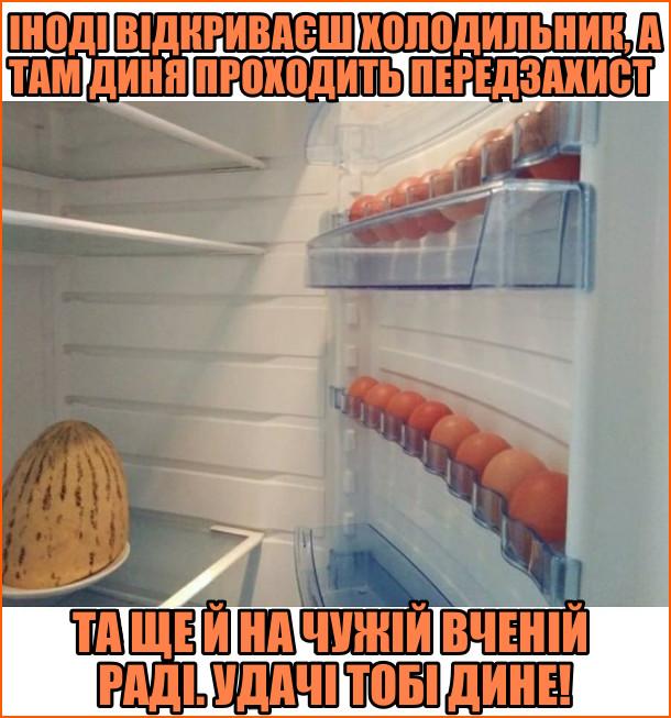Мем В холодильнику. Іноді відкриваєш холодильник, а там диня проходить передзахист, та ще й на чужій вченій раді. Удачі тобі, дине! В холодильнику на поличці лежить диня а на дверцятах в лотках яйця