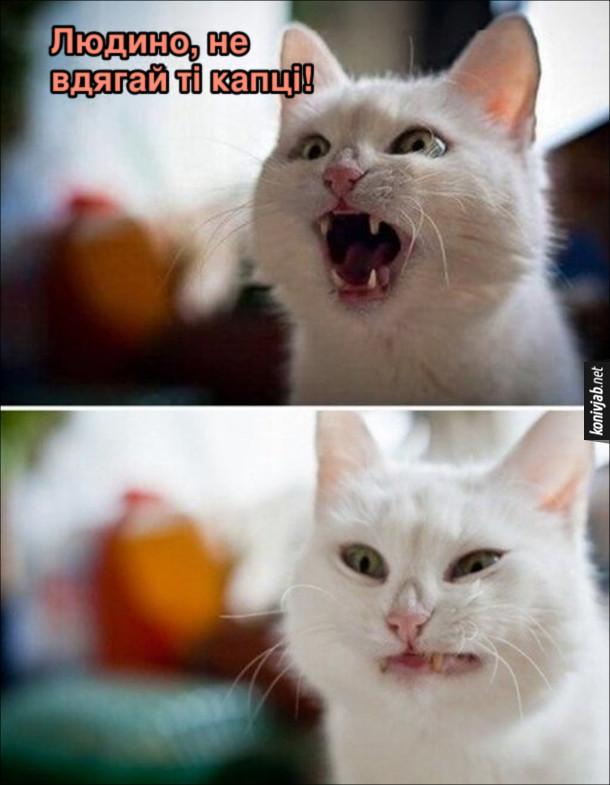Мем кіт наробив в капці. Кіт кричить: - Людино, не вдягай ті капці! А потім коли скривився, бо капці все ж вдягнули