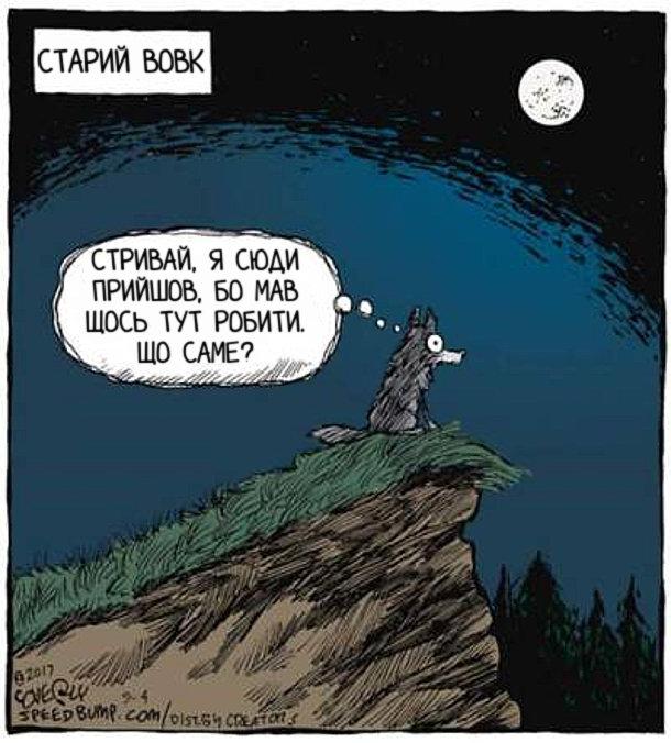 Смішний малюнок Старий вовк виліз на пагорб, світить повний місяць. Вовк думає: Стривай, я сюди прийшов, бо мав щось тут робити. Що саме?