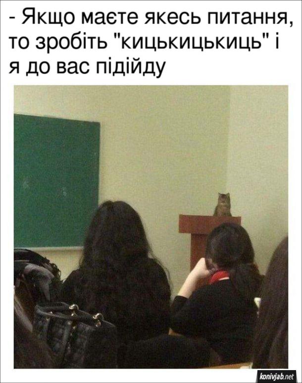 """Мем Кіт-викладач: - Якщо маєте якесь питання, то зробіть """"кицькицькиць"""" і я до вас підійду"""