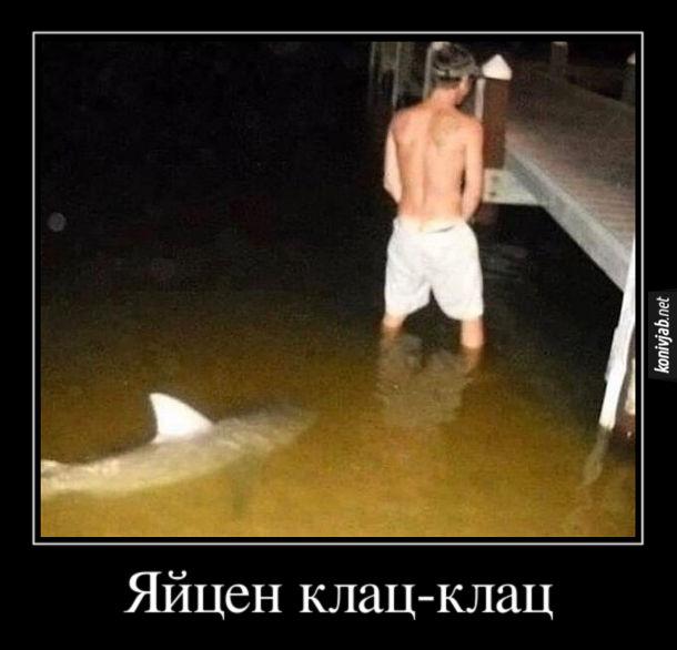 Демотиватор Акула. Хлопець стоїть у воді біля пірсу і сцить. Ззаду підпливає акула. Яйцен клац-клац