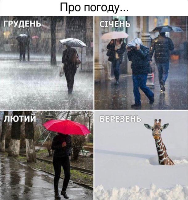 Мем про погоду. Грудень - дощ. Січень - дощ. Лютий - дощ. Березень  - сніг