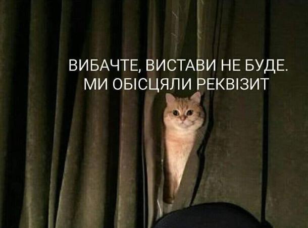 Прикол Кіт-конферансьє: - Вибачте, вистави не буде. Ми обісцяли реквізит