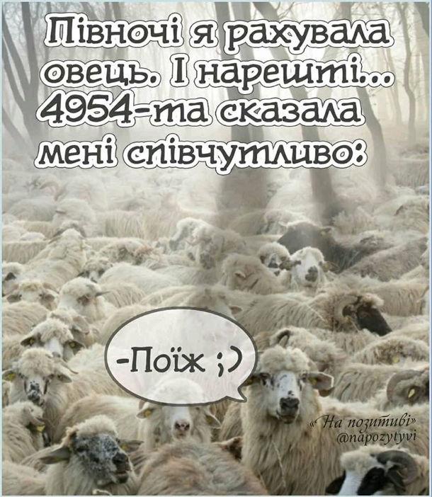 Анекдот про безсоння. Півночі я рахувала овець. І нарешті 4954-та сказала мені співчутливо: - Поїж