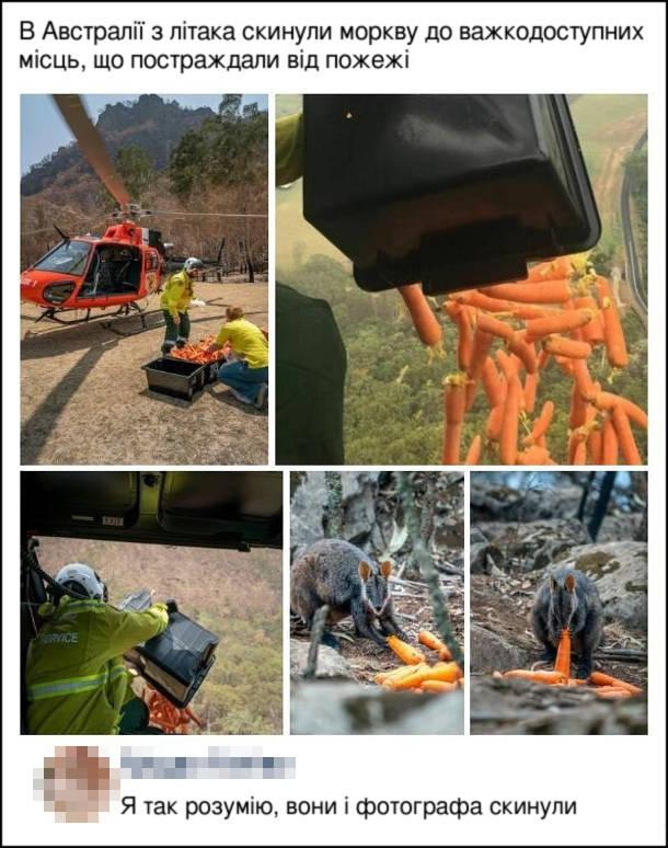Прикол Порятунок тварин в Австралії. В Австралії з літака скинули моркву до важкодоступних місць, що постраждали від пожежі. Коментар: Я так розумію, вони і фотографа скинули