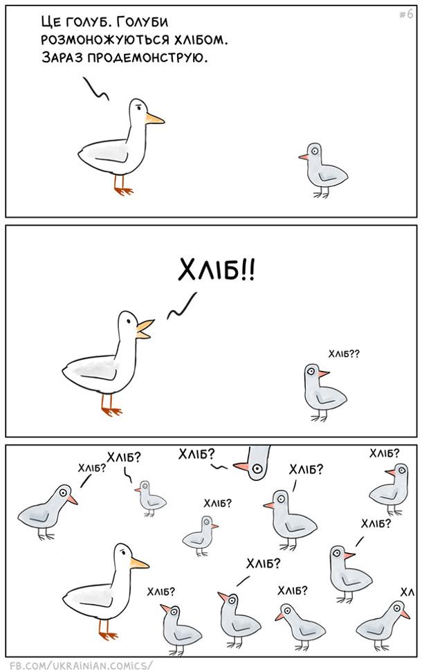 """Смішний комікс Голуби і хліб. Пташка: """"Це голуб. Голуби розмножуються хлібом. Зараз продемонструю. Хліб!"""" Понабігали голуби: """"Хліб?"""" """"Хліб?"""" """"Хліб?"""""""