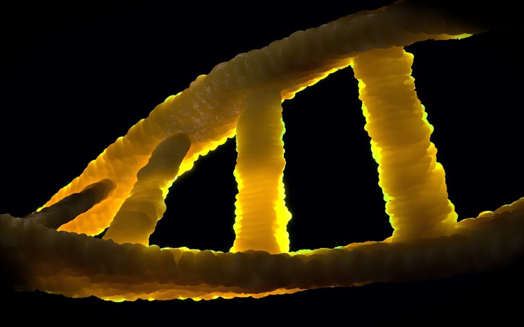 A new test based on the epigenome to detect cancer?