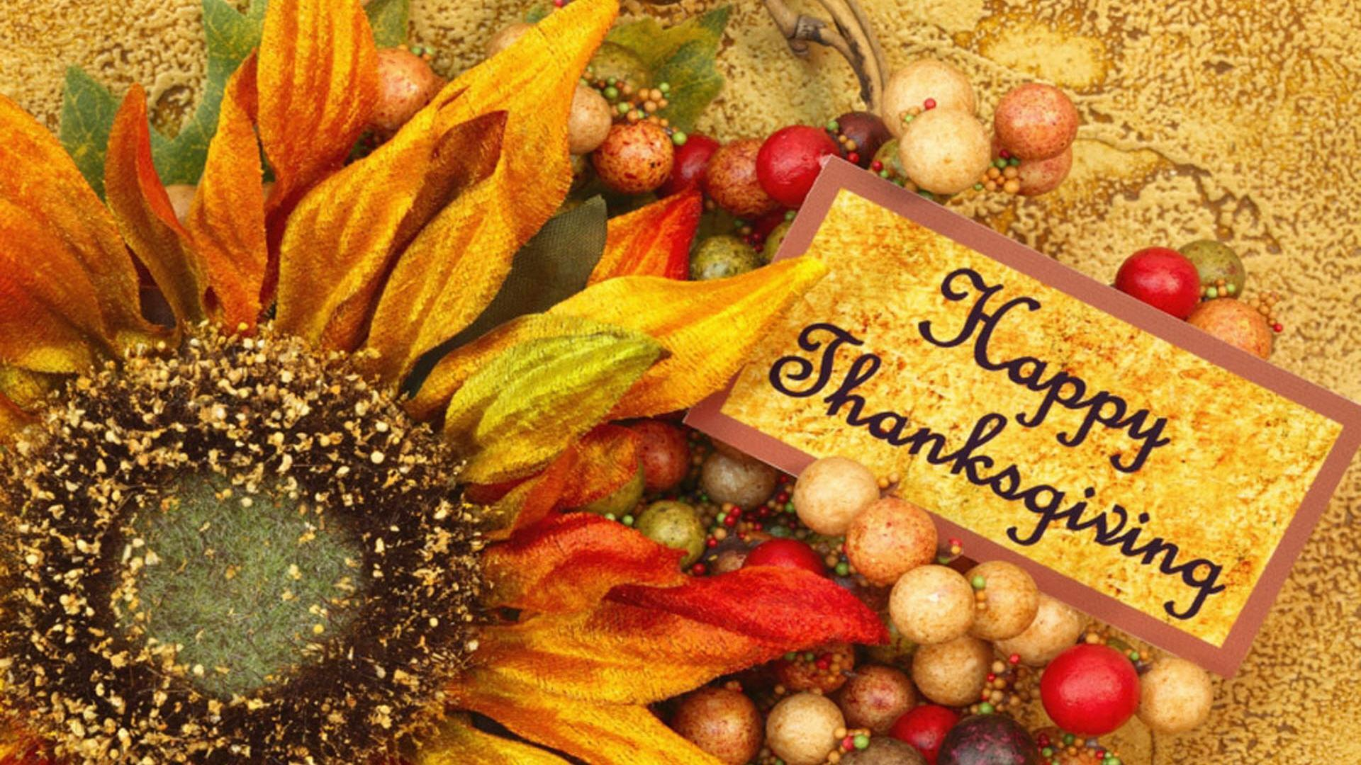 Happy Thanksgiving to All