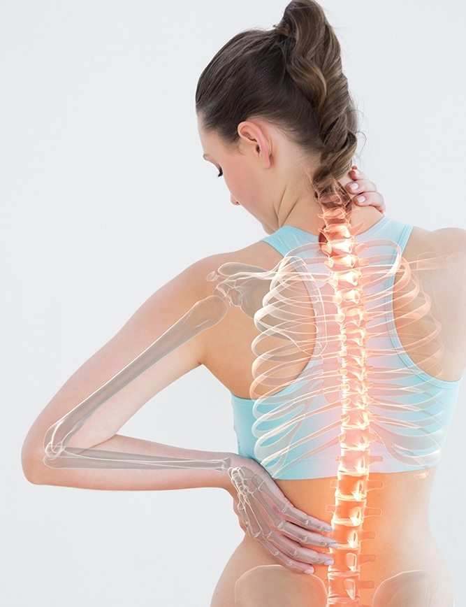 Chiropractic Educational Information