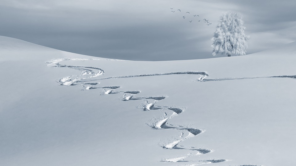 qualities every ski instructor should have 2