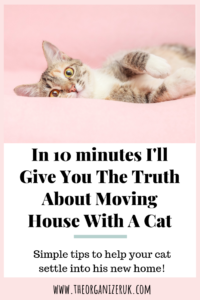 Pinnable image , moving house with a cat.
