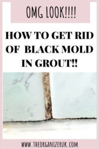 black mold in grout