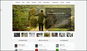 Aggregate elegant best wordpress themes