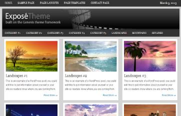 Expose WordPress Photography themes