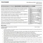 Sample IT Business Analyst CV-Resume