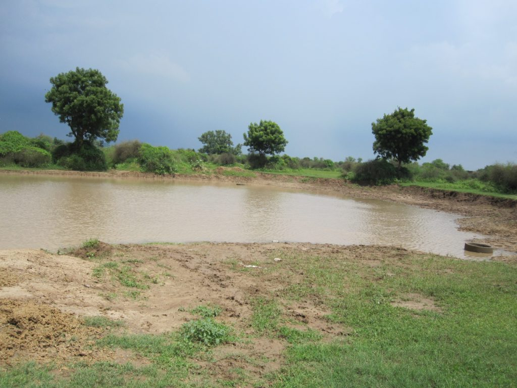 View of water filled during monsoon in the same low-lying land