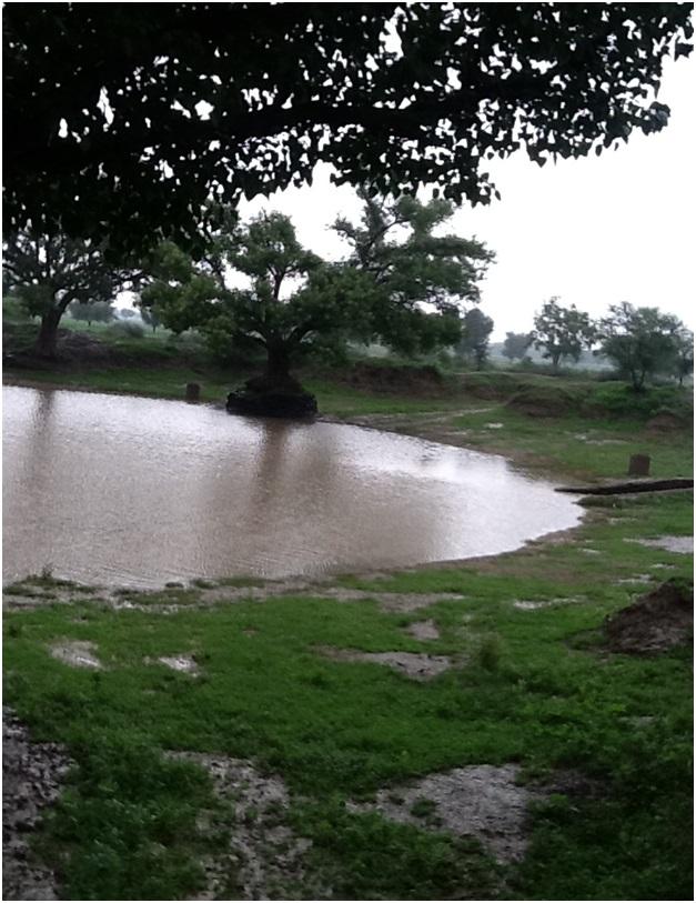 rainwater harvesting pond during monsoon