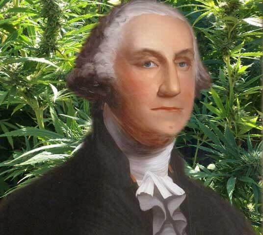 hemp-plastic-george-washington.jpg