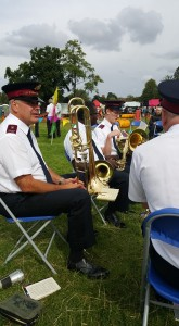Lower band at Town Show 2015