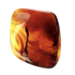 Read more about the article What does Amber Gemstone stand for and what it really means